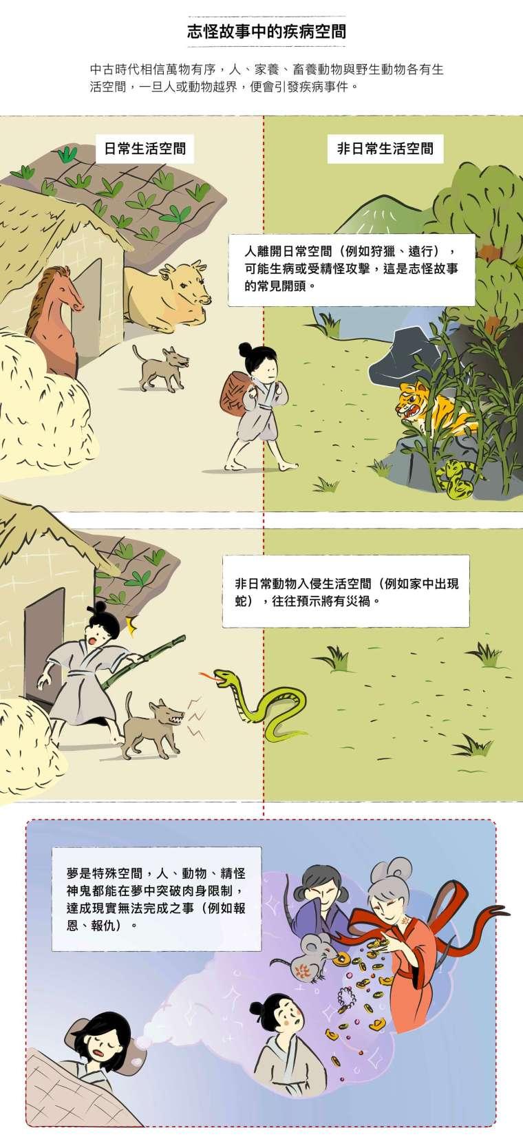 資料來源│劉苑如、羅珮瑄、邱琬淳 圖說設計│劉芝吟、林洵安