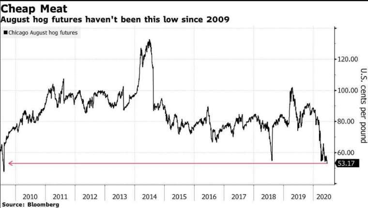 8 月交貨的生豬期貨價格走勢 (圖片: 彭博社)