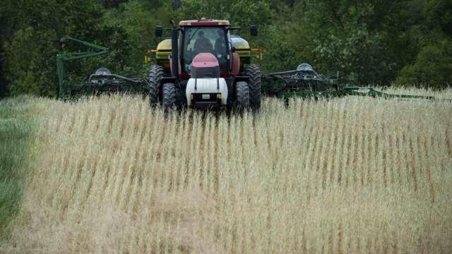 美國農業部錯估種植面積 玉米期貨連兩日共漲8%(圖:AFP)