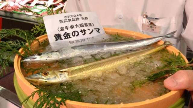 〈鉅亨看世界〉海水溫度上揚 日本秋刀魚價格3年飆漲8倍 (圖片:AFP)