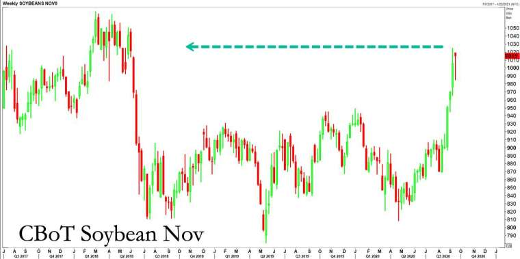 黃豆期貨價格變化 (圖表取自 Zero Hedge)