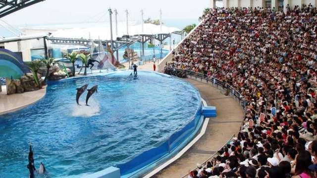 花蓮遠雄海洋公園連假期間來客可期。(圖:遠雄海洋提供)