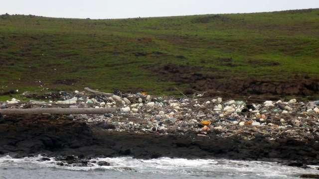 塑膠「微」害代代相傳 中研院首度發現影響潮間帶海洋生物繁衍。(圖:中研院提供)