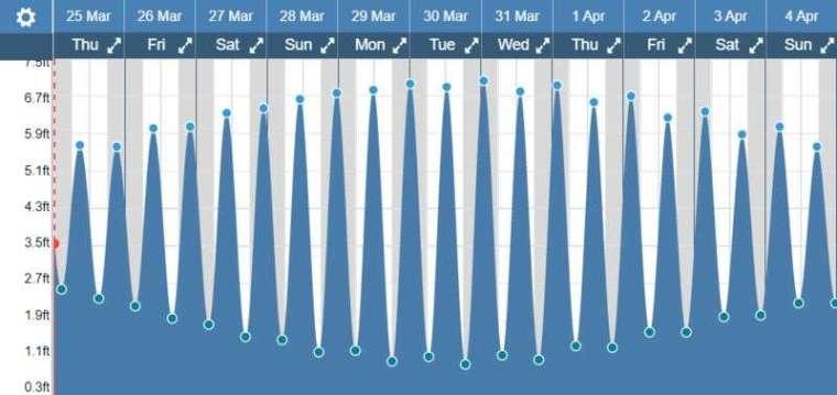 潮汐時間表 (圖: Bloomberg)