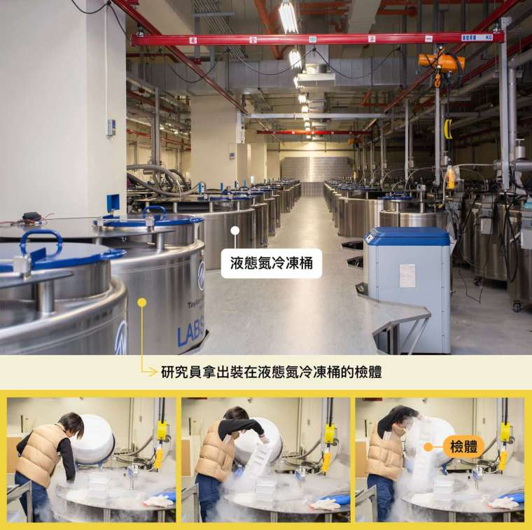 珍貴的檢體裝在冷凍管,部分儲存在攝氏零下 180 度液態氮冷凍桶中,檢體總數量已達三百萬管。 圖│研之有物