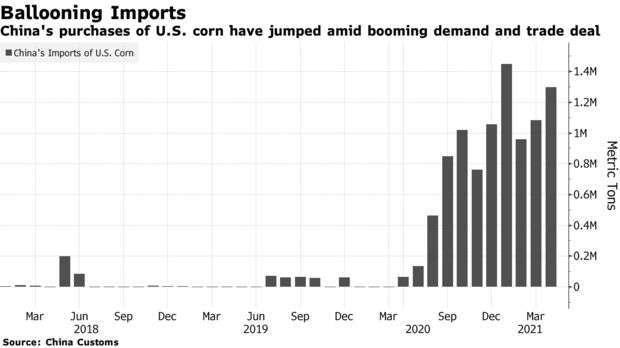 近年中國自美國進口玉米規模 (圖: Bloomberg)