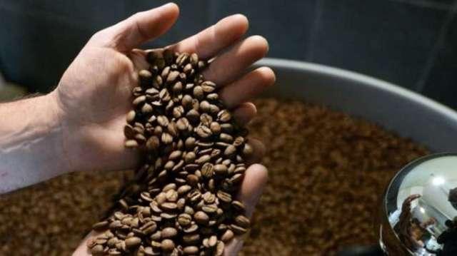 巴西面臨91年來最嚴重乾旱 咖啡豆期貨漲到4年半新高(圖:AFP)