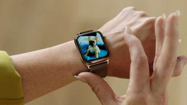 光磊去年打入蘋果Apple Watch供應鏈。(圖:AFP)