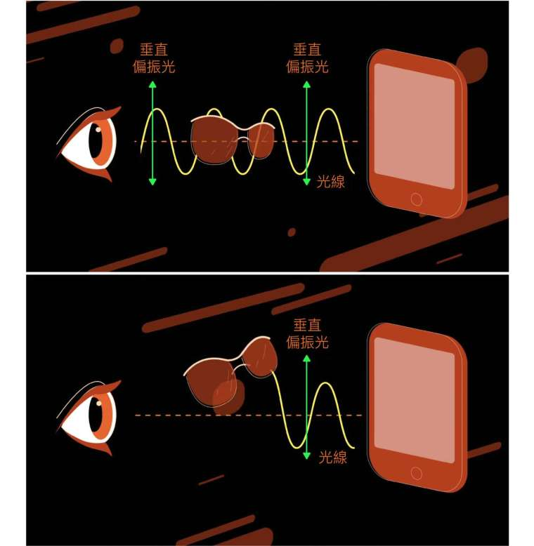 光是一種電磁波,如果光有特定的振盪方向,就稱為「偏振光」。手機發出的光線一般為偏振光,如果透過偏光太陽眼鏡觀看,只能在某個特定角度才能讓光通過,其他角度則不透光。 資料來源│EHT Collaboration and Fiks Film