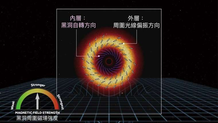 M87 星系中心黑洞的自轉方向(順時鐘)與周圍光線偏振方向(逆時鐘)剛好相應,而這個特定的偏振方向,也就形成黑洞照片上類似丹麥甜甜圈的特殊紋路。 資料來源│EHT Collaboration and Crazybridge Studios