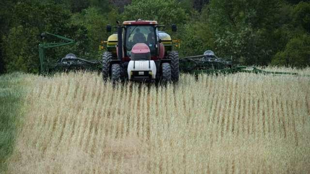 農產品價格上揚 美國農民收益寫8年高點(圖:AFP)