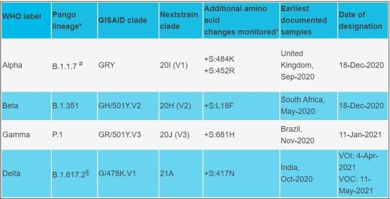目前世衛定義的的變種病毒名單中「必須關注」的有 4 種,包括 Alpha、Beta、Gamma 和 Delta (圖片:WHO 官網)