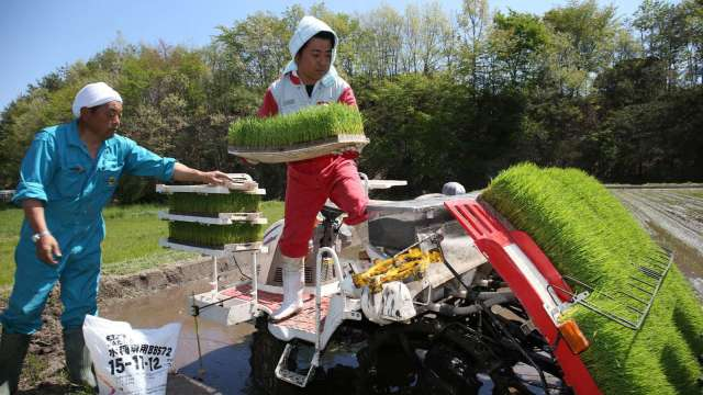 美國FDA准許進口日本福島等地食品 僅剩台韓中港澳未解除禁令 (圖片:AFP)