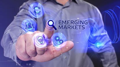 遭熊吻的新興市場  想危機入市先看二大指標